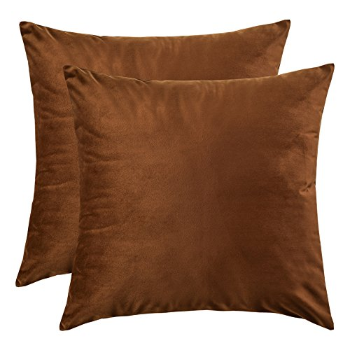 Brown Velvet Pillow - Artcest Set of 2, Cozy Solid Velvet Throw Pillow Case Decorative Couch Cushion Cover Soft Sofa Euro Sham with Zipper Hidden, 18