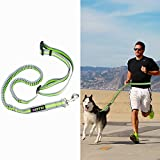 ZOTO Hands Free Dog Leash, Dog Running Adjustable Retractable Waist Belt, Reflective Dog Leash for Running, Walking, Hiking and Jogging, Comfortable Medium & Large Dogs Walking Belt for Leash Trainer (Grey + Green)