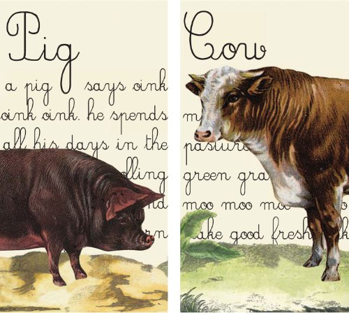 HomArt Large Decorative Pig and Cow Matches