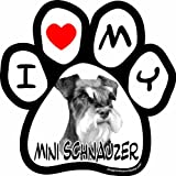 Imagine This 5-1/2-Inch by 5-1/2-Inch Car Magnet Picture Paw, Mini Schnauzer