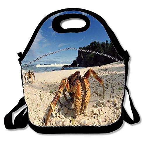 Crabs Tropical Beach Coconut Animals Neoprene Lunch Bag for Women, Men and Kids - Reusable Lunch Tote for Work and School