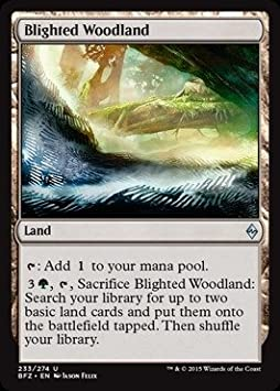Uncommon 4 x Blighted Woodland 233//274 - Battle for Zendikar