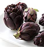 "Purple Artichoke Plant - Delicious Perennial Vegetable - Easy to Grow - 4"" Pot"