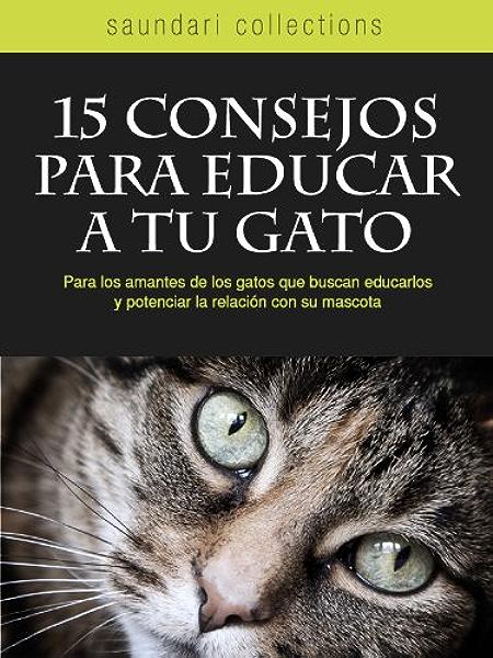 15 Consejos para Educar a tu Gato eBook: Laglere, Ana Laura, Calvetti, Vittorio: Amazon.es: Tienda Kindle