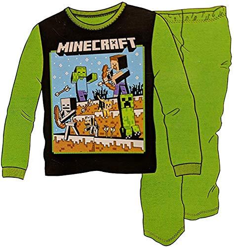 Minecraft Boy's Steve Fighting 2-Piece Pajama Set (X-Large 14-16, Green) ()