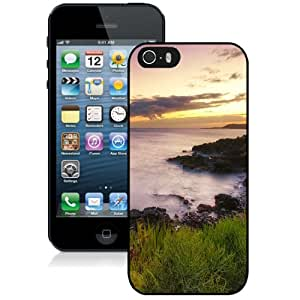 Beautiful Designed Case For iPhone 5S Phone Case With Seaside Rocks1 Phone Case Cover