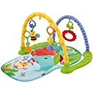 Fisher-Price Link 'n Play Musical Gym