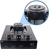 INFI Audio Hybrid Class AB Tube Amplifier Power Amp
