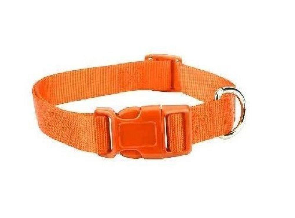 Orange Dog Collar Bulk Lot Packs 4 Sizes Nylon Litter Band Puppy Rescue Shelter