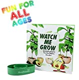 AvoSeedo Avocado Plant Kit – Kids Grow Your Own Avocado, Watch Me Grow Kit, Family Project Kit, Grow Avocado, Great For Kids And Adults, Watch Me Grow Book Included