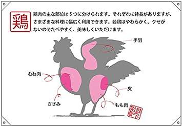 Amazon ドロップ幕ポンジ 鶏 部位イラスト No69067 受注生産