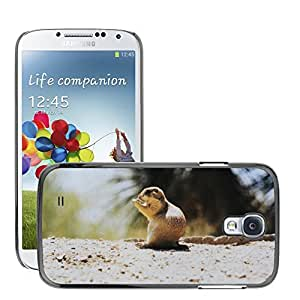 GoGoMobile Slim Protector Hard Shell Cover Case // M00118286 Grey Squirrel Squirrel Rodent Animal // Samsung Galaxy S4 S IV SIV i9500