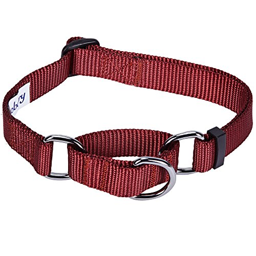 Blueberry Pet 19 Colors Safety Training Martingale Dog Collar, Fired Brick, Medium, Heavy Duty Nylon Adjustable Collars for Dogs ()