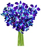 #7: KaBloom Exotic Blue Sapphire Orchid Bouquet of 10 Fresh Blue Dendrobium Orchids from Thailand