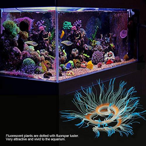 Fdit Socialme-EU Adorno de Plantas Vivid Artificial Coral para Acuario Submarino Pez Tanque Jardin Acuarios y Peceras(Azul): Amazon.es: Productos para ...