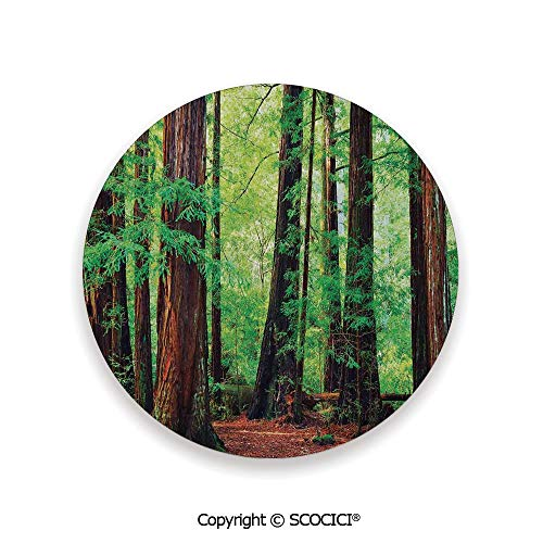 - Ceramic Coaster With Cork Mat on the back side, Tabletop Protection for Any Table Type, round coaster,Woodland Decor,Redwood Trees Northwest Rain Forest Tropic,3.9