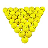 Bridgestone E6 Yellow 36 Pack Golf Balls Mint Condition ()