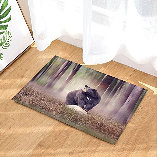 NYMB Foggy Forest Animals Decor, Black Bear on a Rock in the Woods Bath Rugs, Non-Slip Doormat Floor Entryways Indoor Front Door Mat, Kids Bath Mat, 15.7x23.6in, Bathroom Accessories
