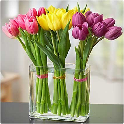 1 X Clear Glass Rectangular Flower Vase Terrarium 24cm Long 18 Cm