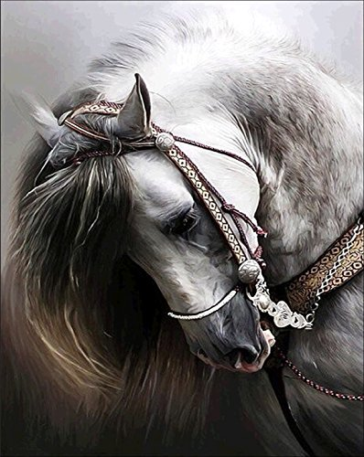5D DIY Diamond Painting kit Rhinestone Embroidery Cross Stitch Arts for Craft Home Wall Decor,White Horse