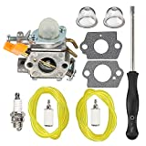 HIPA 308054034 308054014 Carburetor with Tune Up Kit for Ryobi RY09053 RY09055 RY09056 RY08554 RY09907 Leaf Blower Vacuum