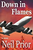 img - for Down in Flames book / textbook / text book