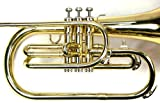 Moz Advanced Monel Pistons Marching Mellophone Key