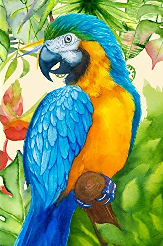 Tropical Macaw Notebook Journal: a lined journal with a vibrant, striking, colorful cover for bird lovers and stationery connoisseurs.