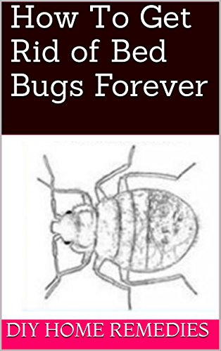 How To Get Rid of Bed Bugs Forever (Best Way To Store A Mattress)
