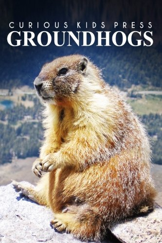 Groundhogs - Curious Kids Press: Kids book about animals and wildlife, Children's books 4-6