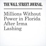 Millions Without Power in Florida After Irma Lashing | Arian Campo-Flores,Leslie Scism,Jon Kamp