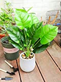 """18"""" Small Fake Plants Artificial Mini Potted Faux"""