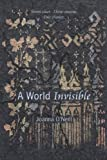 Front cover for the book A World Invisible by Joanna O'Neill