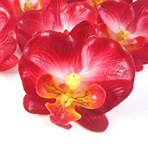 "(12) Small Red Phalaenopsis Orchid Silk Flower Heads - 2"" - Artificial Flowers Heads Fabric Floral Supplies Wholesale Lot for Wedding Flowers Accessories Make Bridal Hair Clips Headbands Dress 1"