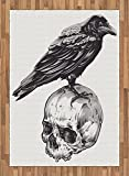Scary Area Rug by Ambesonne, Scary Movies Theme Crow Bird Sitting on a Human Old Skull Sketchy Image Print, Flat Woven Accent Rug for Living Room Bedroom Dining Room, 5.2 x 7.5 FT, Black and White