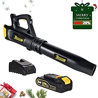 Blower, TECCPO 310CFM 20V 2Ah Lithium Ion, 2-Speed Cordless Axial Fan Design Lightweight Professional Sweeper, Battery and Charger Include, Ideal for Sidewalks and Decks in Garden - TDAB02G