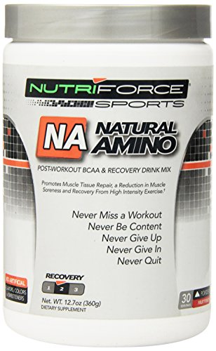 Nutriforce Natural амино Дополнение, фруктовый пунш, 12,7 унция