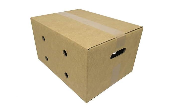 Pack de 20 Cajas de Cartón con Asas. Color Marrón y Canal ...