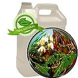 Moringa Leaf Oil Extract - Moringa Oleifera - 1 gallon (128oz) - Super Antioxidants, Macronutrients, Phenolic compounds, Amino acids, Vitamins, Chlorogenic and Behenic Acid