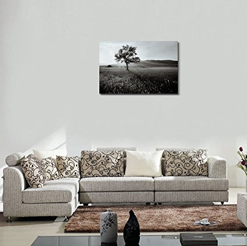 Black and White Landscape of a Field of Wild Flowers Wall Decor