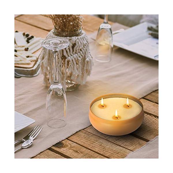 51HlHfQlNEL Aku Tonpa Citronella-Kerzen für den Innen- und Außenbereich, 382 g, 3 Dochte, Sojawachs, tragbare Reisedose, Geschenk…