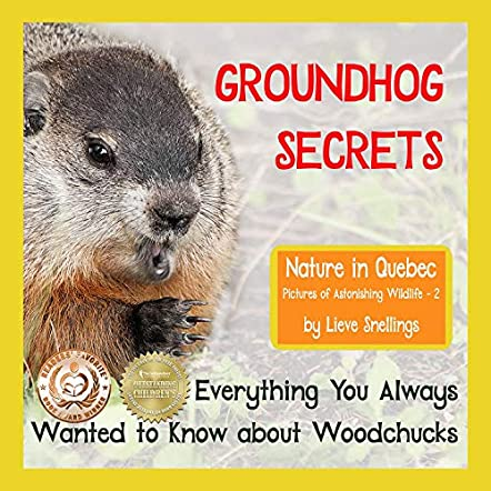 Groundhog Secrets
