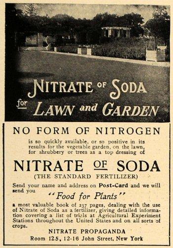 1906 Ad Nitrate of Soda Lawn Garden Fertilizer Food - Original Print Ad from PeriodPaper LLC-Collectible Original Print Archive