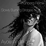 Slowly Burning Bridges (Thunberg Remix)