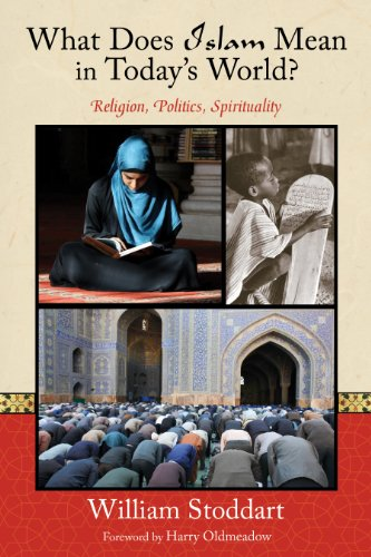What Does Islam Mean in Today's World?: Religion, Politics, Spirituality (Perennial - William Does What
