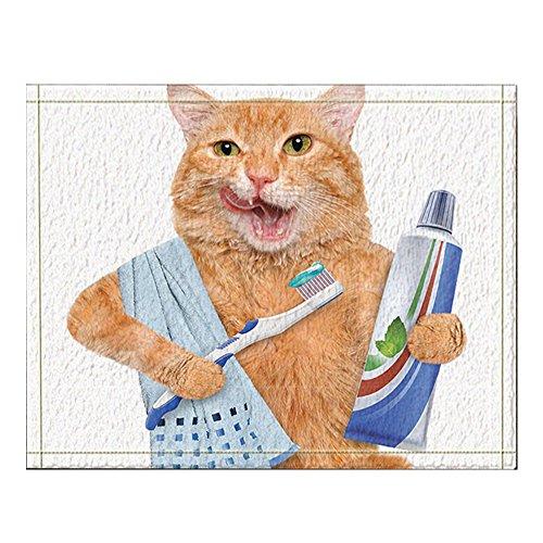 NYMB A Cat with Toothpaste on Toothbrush Bath Rugs Non-Slip Floor Entryways Outdoor Indoor Front Door Mat 60x40cm Bath Mat Bathroom Rugs