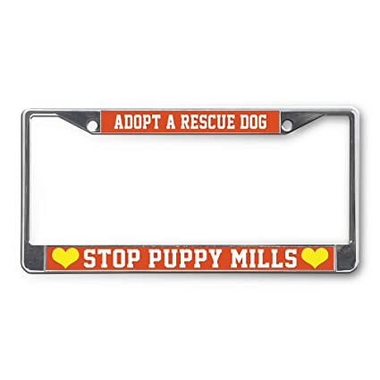 Amazon com: Sign Destination Metal License Plate Frame Adopt