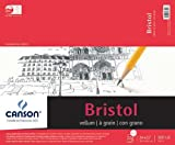 Canson Foundation Series Foundation Series Vellum Bristol, 14 x 17 Inches (C702-4607)