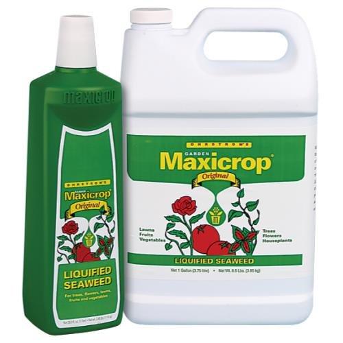 Maxicrop Original 0-0 - 1 Maxicrop Original Liquid Seaweed 2.5 Gallon (2/Cs)