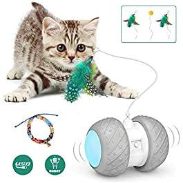 Interactive Robotic Cat Toys,Automatic Irregular USB Charging 360 Degree Self Rotating Ball,Automatic Feathers/Birds/Mouse Toys for Cats/Kitten,Build-in Spinning Led Light,Large Capacity Battery